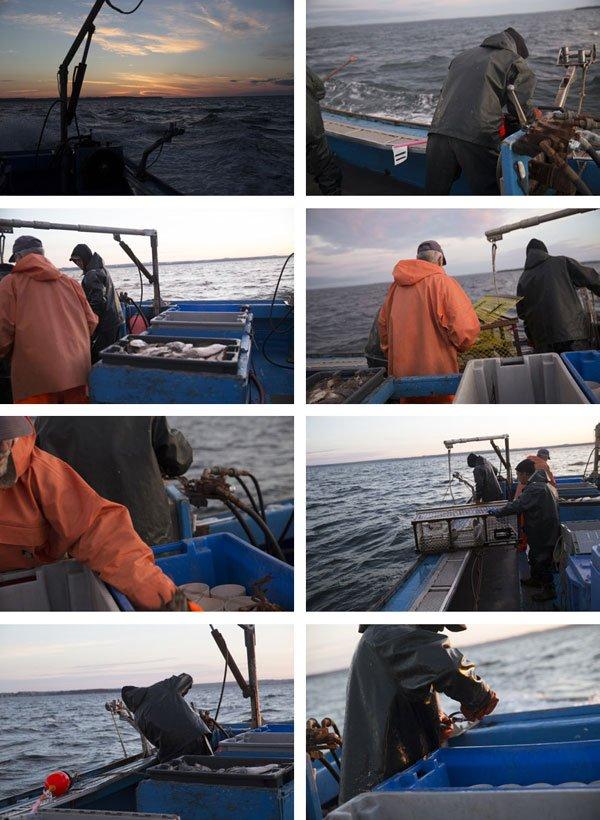 Lobster Island Fishing
