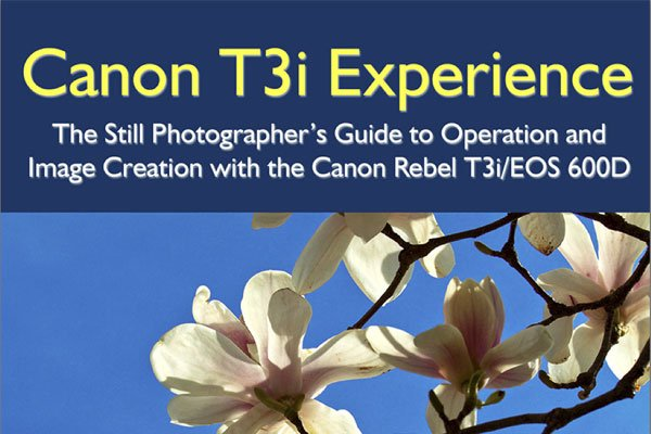Canon T3i / 600D Camera eBook