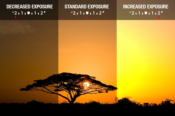 Understanding Camera Exposure: ISO, Aperture, and Shutter Speed ...