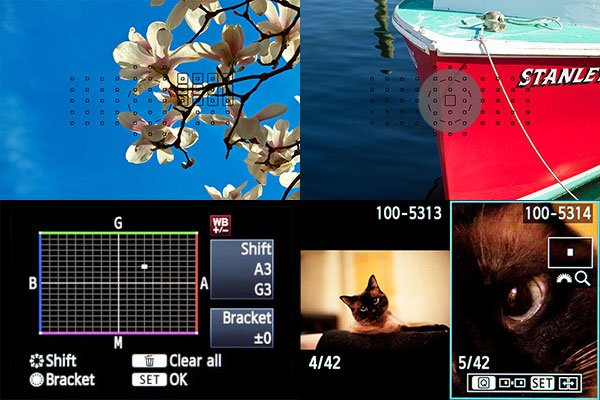 Canon 5D Mark III Focusing Modes and White Balance