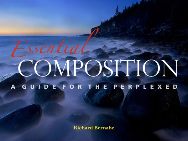 Essential Composition ebook: A Guide for the Perplexed