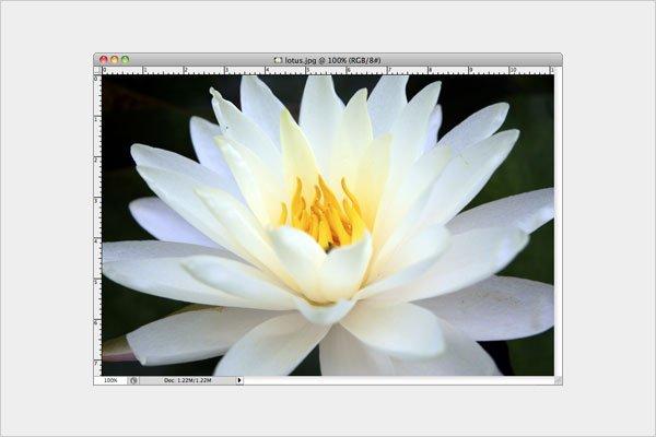 شفاف سازی تصویر در فتوشاپ