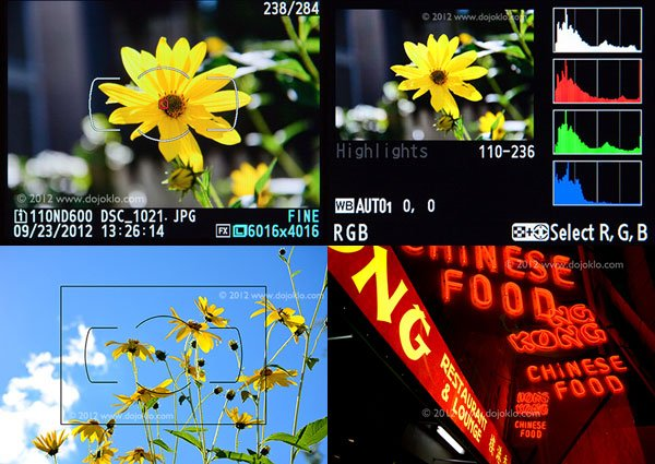 Nikon D600 Focusing Modes and Histogram