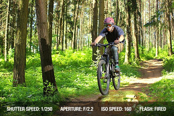 Downhill racer rides through the forest