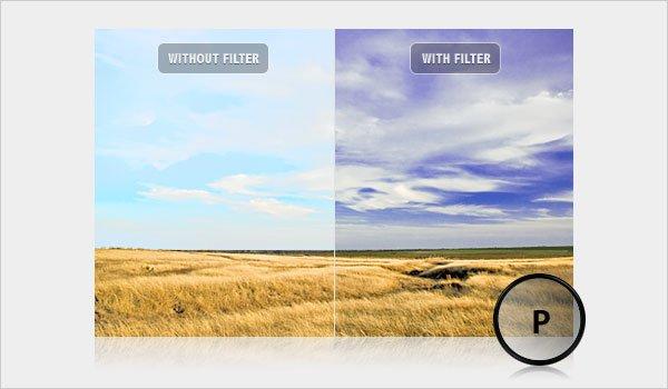 Polarizing Filter