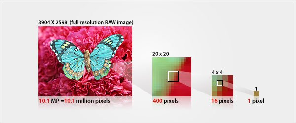 The resolution of a digital image