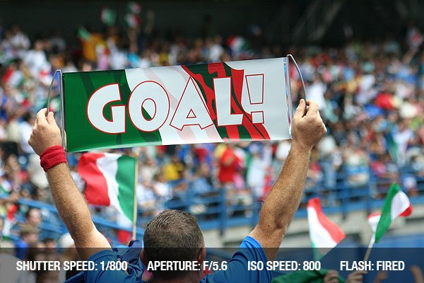 A soccer fan cheers during the final game between France and Italy in FIFA World Cup 2006