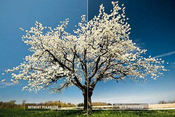 [Image: top-ten-photography-tips-4.jpg?x35090]