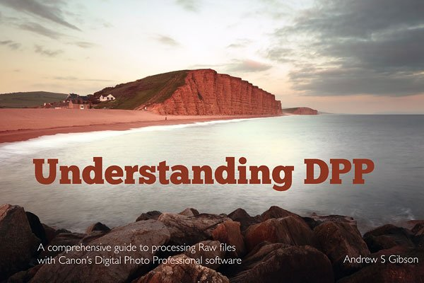Understanding DPP eBook